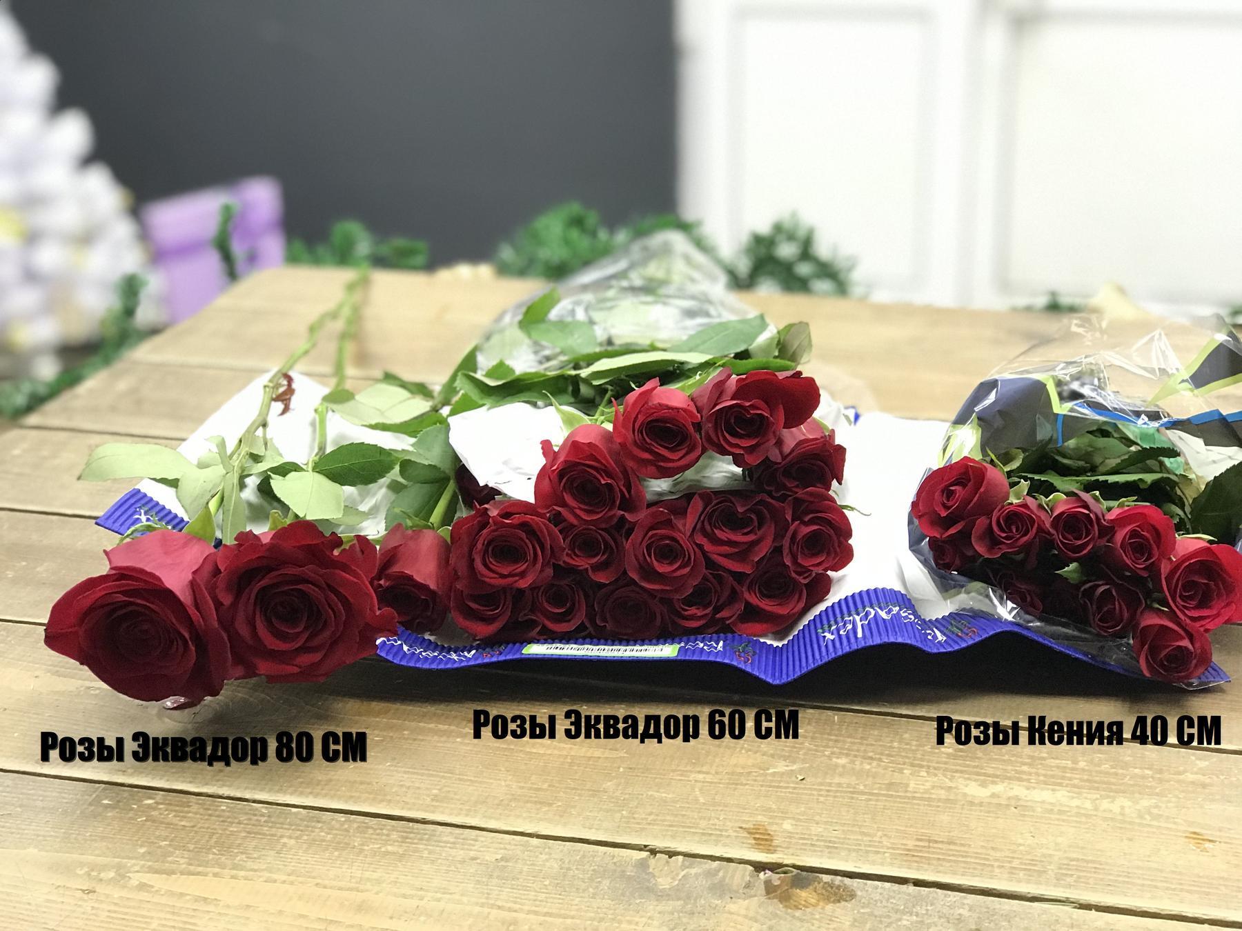 Розы Кенийские, Розы Эквадорские
