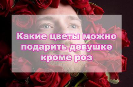 Какие цветы подарить девушке, кроме роз?
