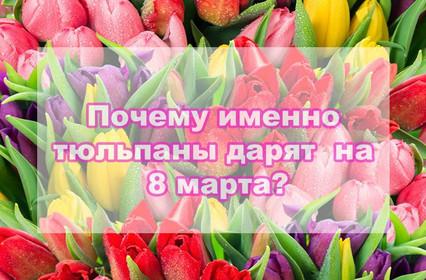 Почему именно тюльпаны так популярны 8 марта