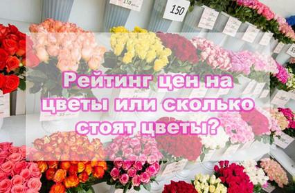 Рейтинг цен или сколько стоят цветы?