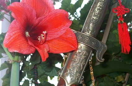 Цветы в мировой истории