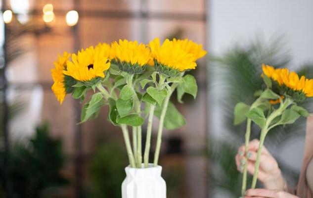 Цветочная подписка или абонемент на еженедельную доставку цветов.