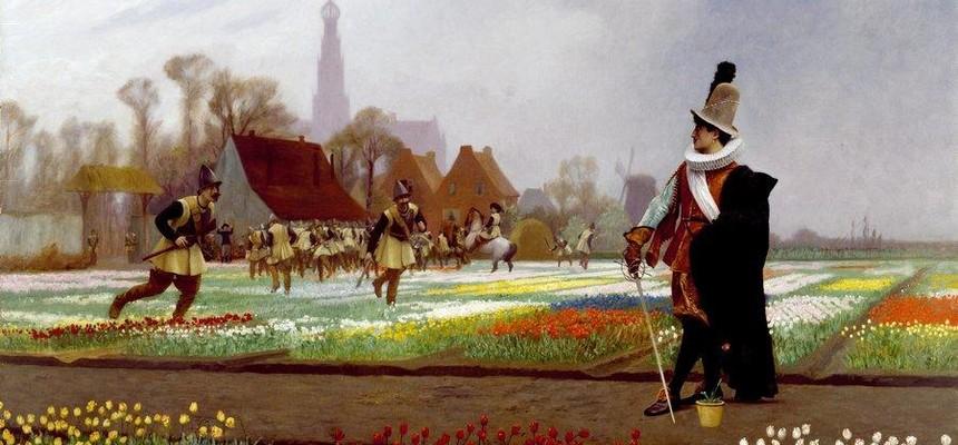 Тюльпаны - история появления