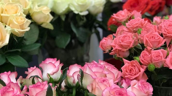 Чем отличаются Эквадорские розы от Кенийских