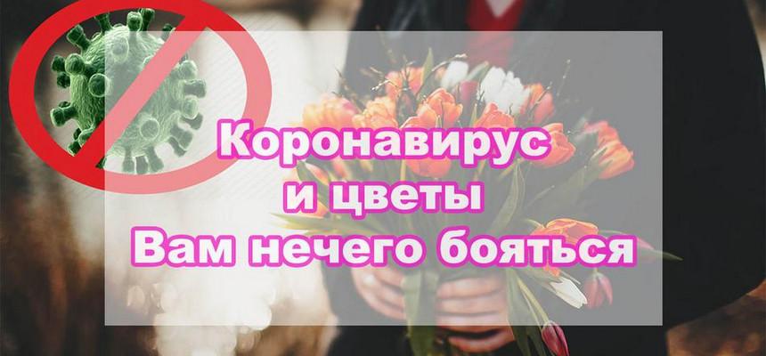 Стоит ли покупать цветы из-за коронавирусной инфекции?