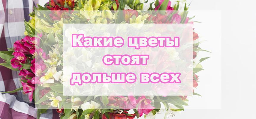 Какие цветы самые стойкие?