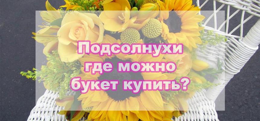 Подсолнухи: где купить этот оригинальный цветок?