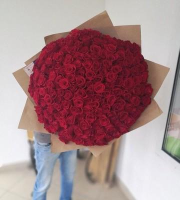 Букет из 171 эквадорской розы 60 см