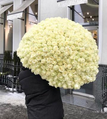 Шикарный букет из 301 розы