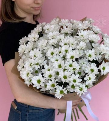 Букет из 15 хризантем ромашковидных