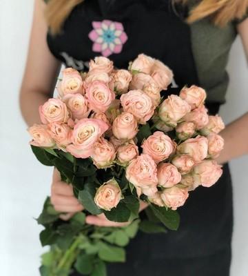 Многоголовая роза Бомбастик (штучно)