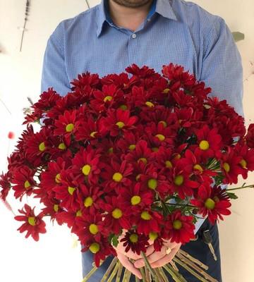 Хризантемы разноцветные (Штучно)