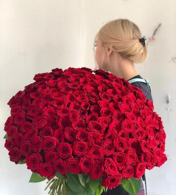 Шикарный букет из 151 розы