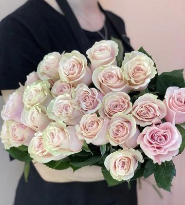 Розы Нежные Faith (Штучно)