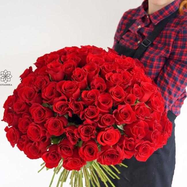 Розы красные с крупным бутоном (Штучно) - вид 1