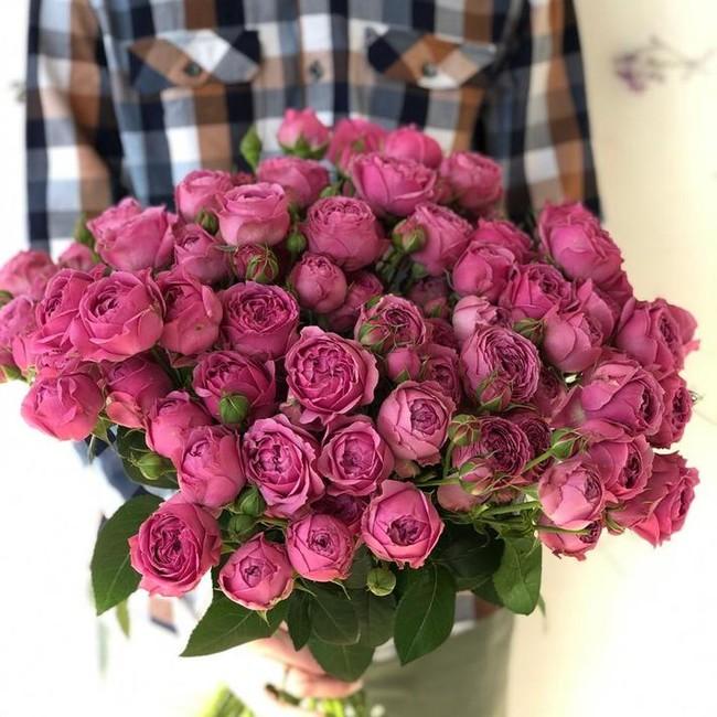 Пионовидная роза розовая (штучно) - вид 1
