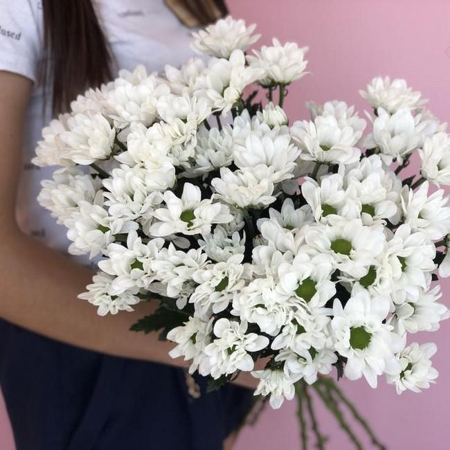 Хризантемы белые (Штучно)