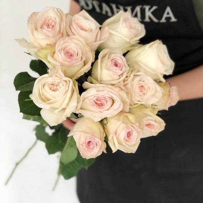 Premium розы Вайт О'Хара (White O'Hara) (Штучно) - вид 1