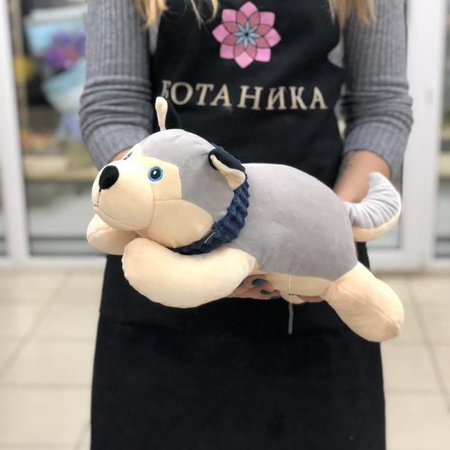 Мягкая игрушка Хаски - вид 1