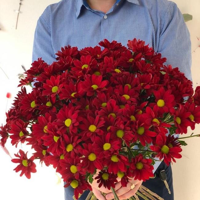 Хризантемы разноцветные (Штучно) - вид 1