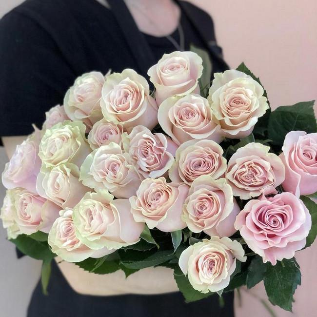 Розы Нежные Faith (Штучно) - вид 1