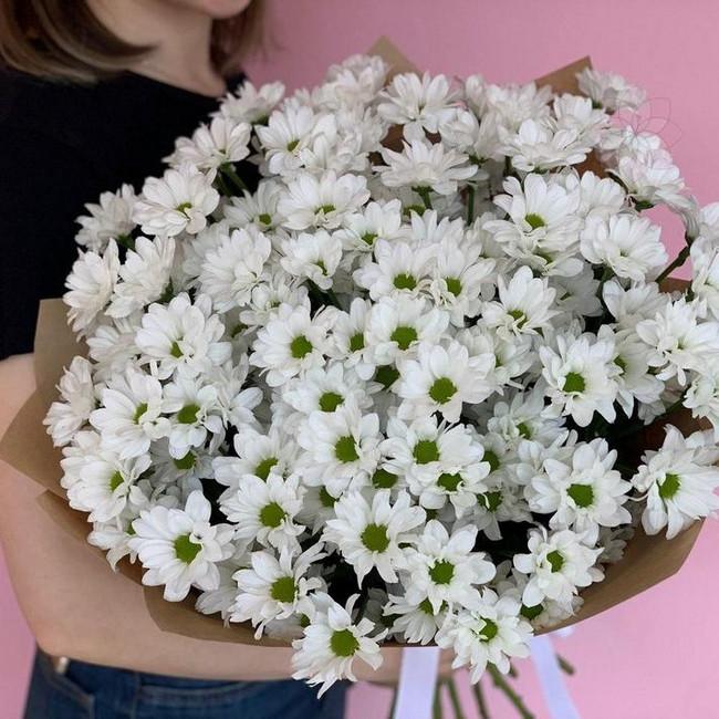 Букет из 15 ромашковидных хризантем
