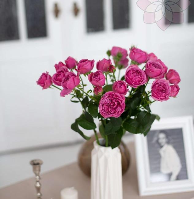 Абонемент на цветы